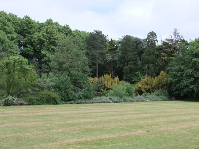 Looking toward the Lime Wood, Easton Lodge