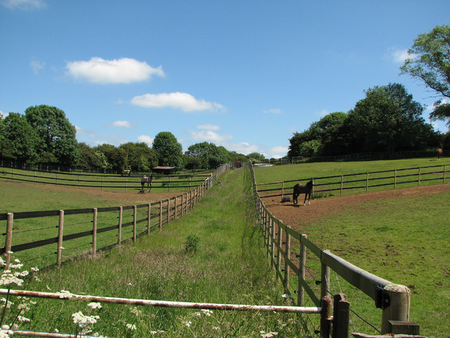 Sproxton: paddocks where ironstone was once quarried