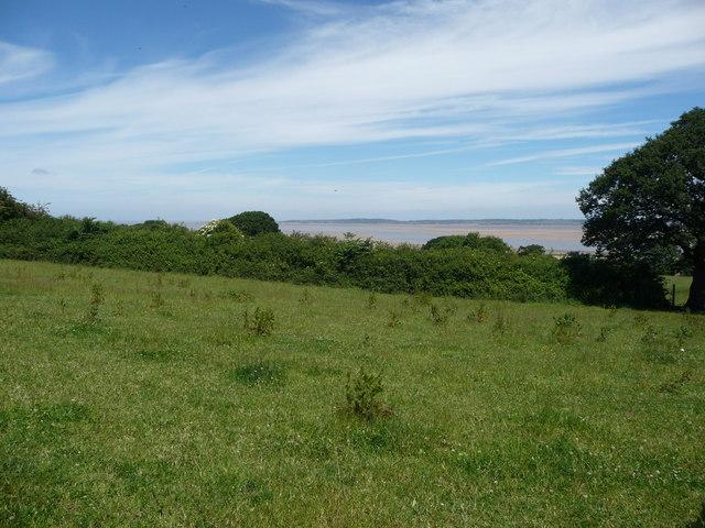 Footpath across fields above the Dee estuary