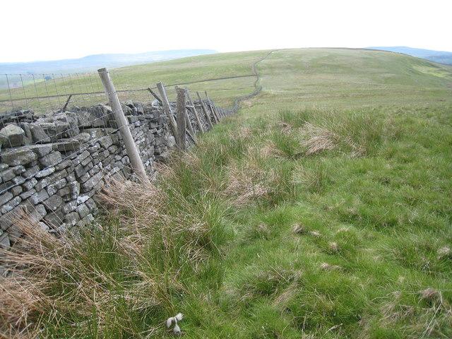 Boundary wall near Burton Outstray