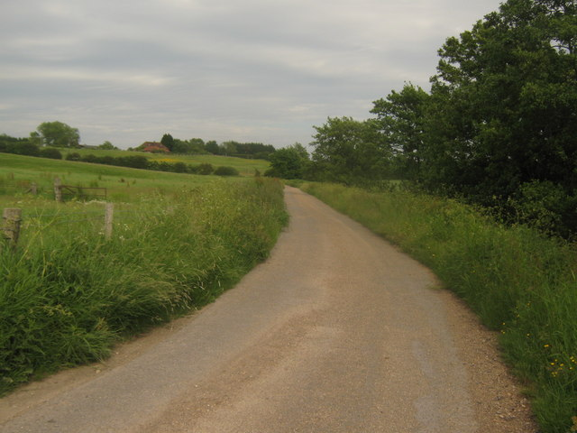 Footpath towards Reading Street