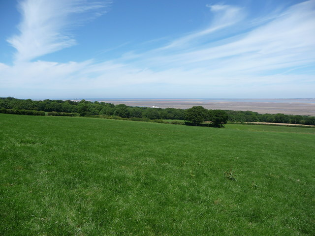 View from a footpath above the Dee estuary