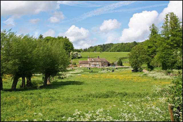 Cotswold Meadow