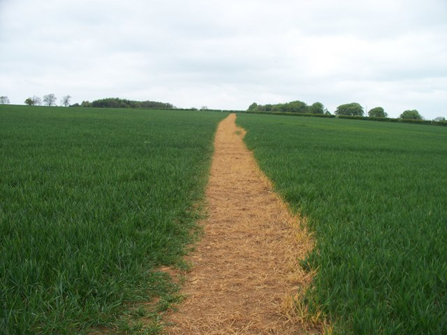 Footpath crosses bridleway [1]