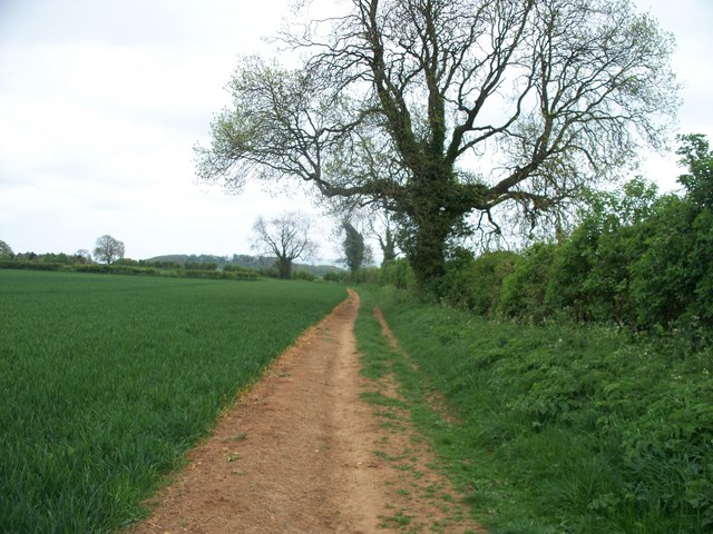 Footpath crosses bridleway [2]