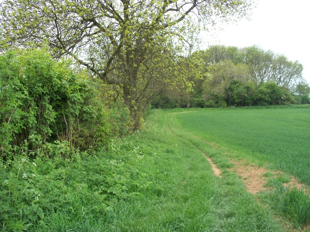 Footpath crosses bridleway [3]