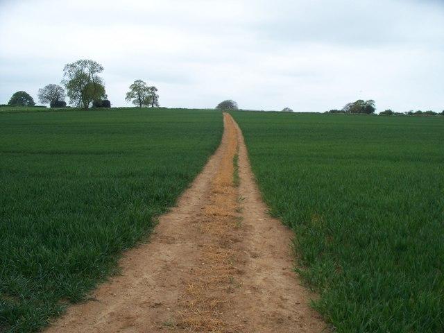 Footpath crosses bridleway [4]