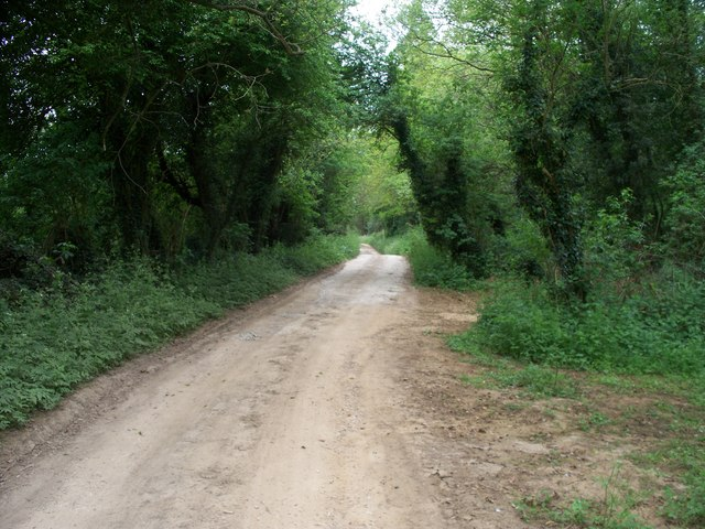 Driveway to the farm