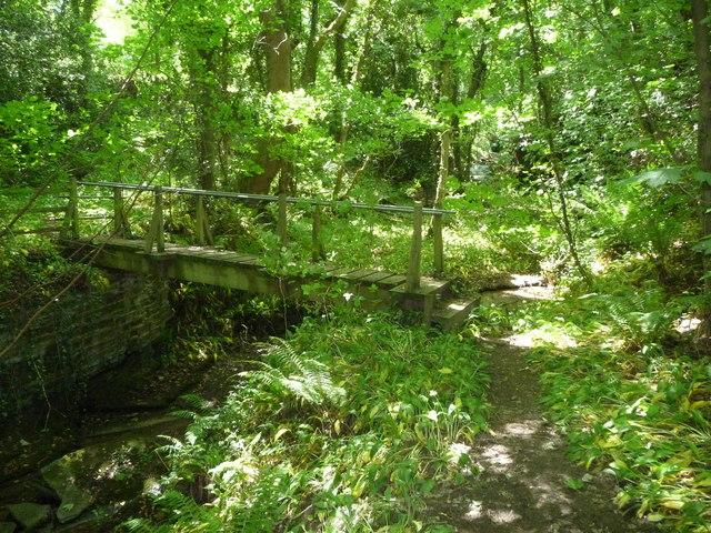 Footbridge over the Afon Marsiandwr in Stokyn Dingle in June