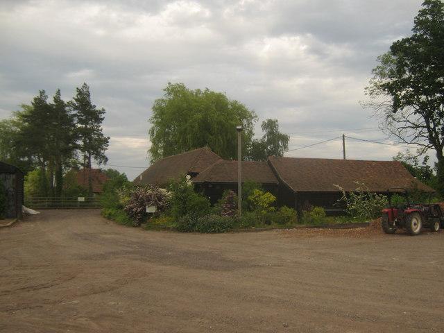 Hope's Grove Nursery
