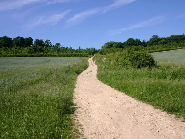 Footpath up Knowlands Hill