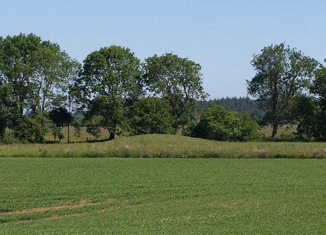 Bowl barrow near Dursdon Drove