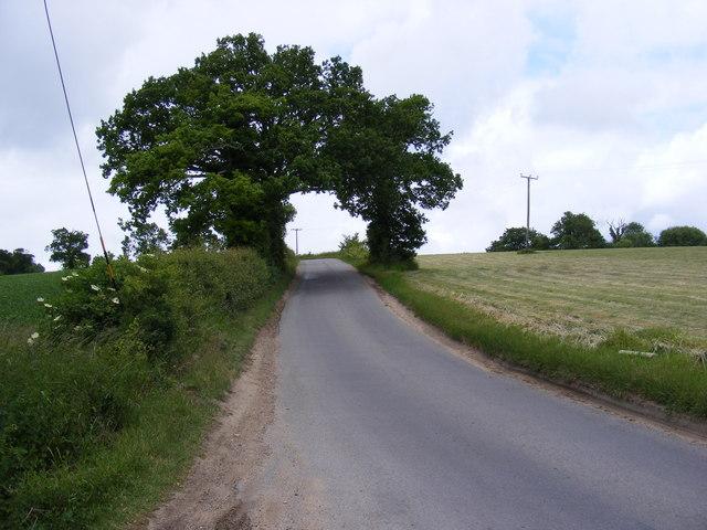 Holmes Hill, Peasenhall