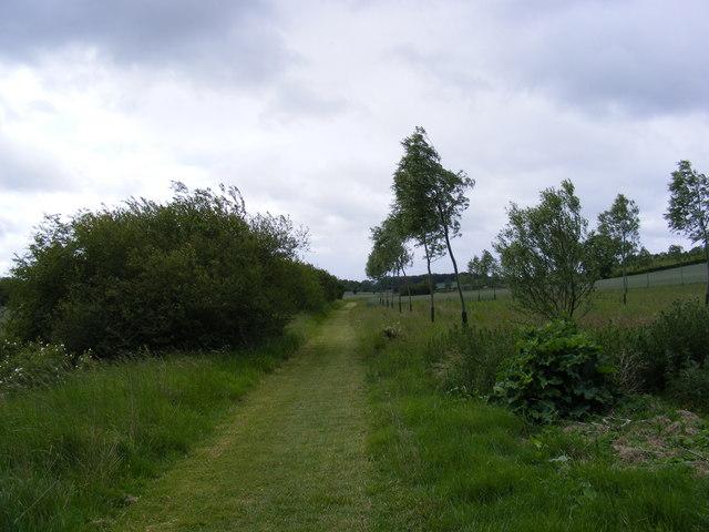 Footpath to Heveningham Long Lane & Mill Road