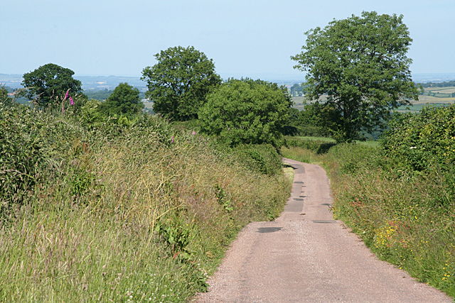 Sampford Peverell: ridge road