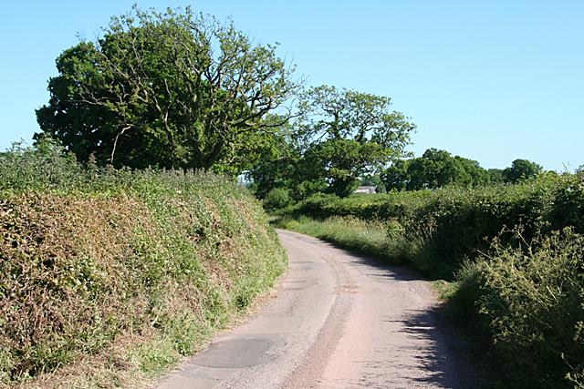 Sampford Peverell: near Great Ridge Farm