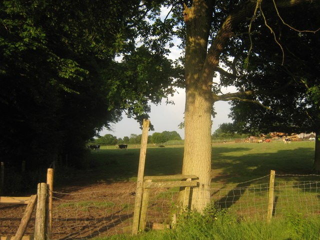 Stile near Pillreed Shaw