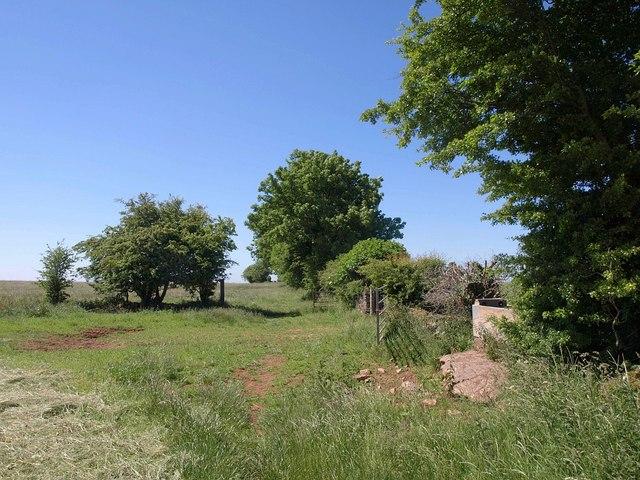 Monarch's Way near Higher Pitts Farm