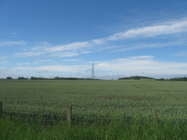 Arable land near Bankhead