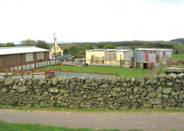 Bellymack farm