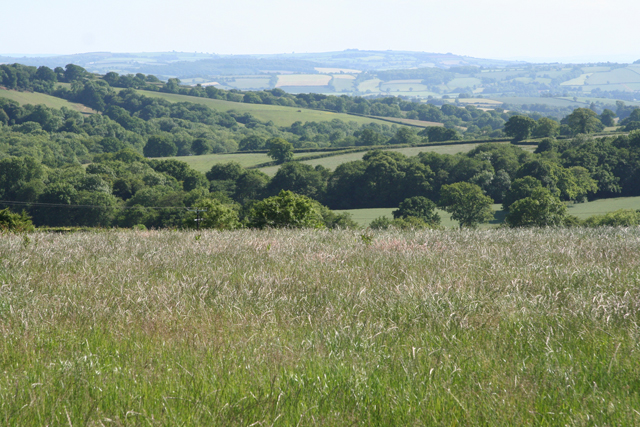 Sampford Peverell: south from Tower Hill