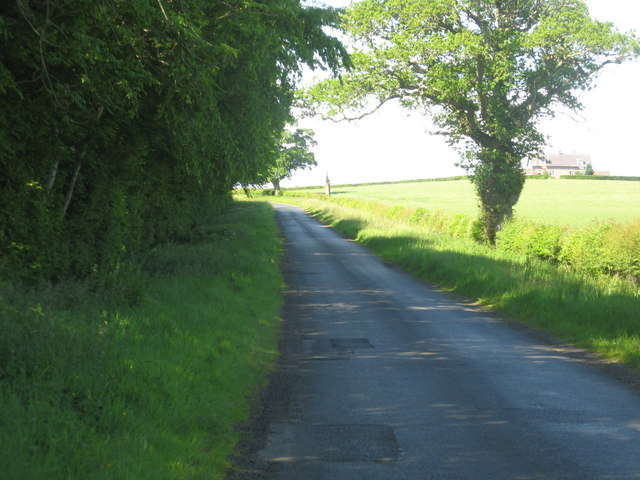 Minor road near Dunglass Wood