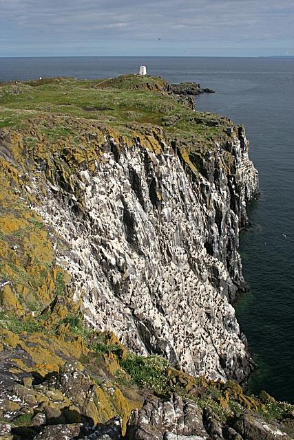 Cliffs at Green Face