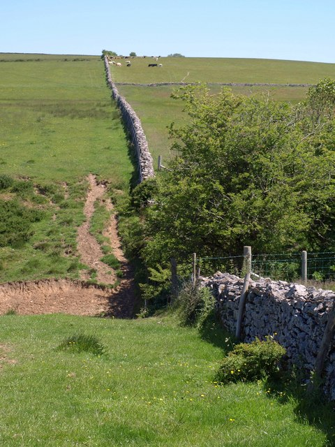 Dry stone wall, Eastwater
