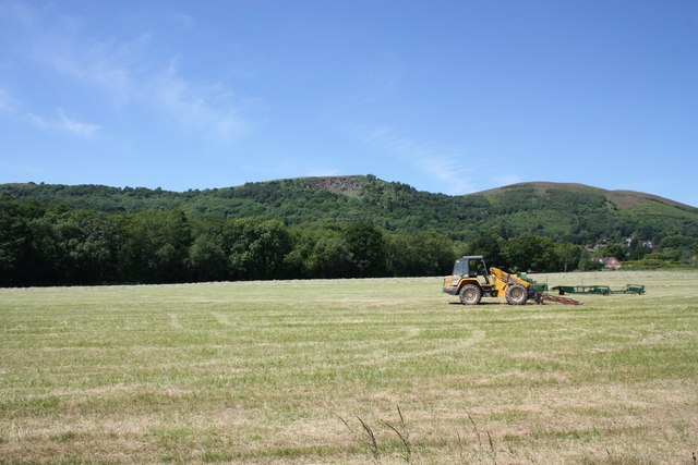 Hay harvest at noon on the longest day