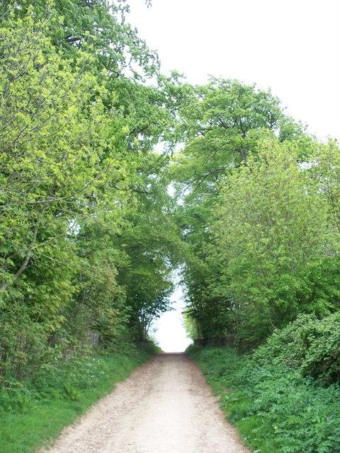Bridleway to Darlingscott