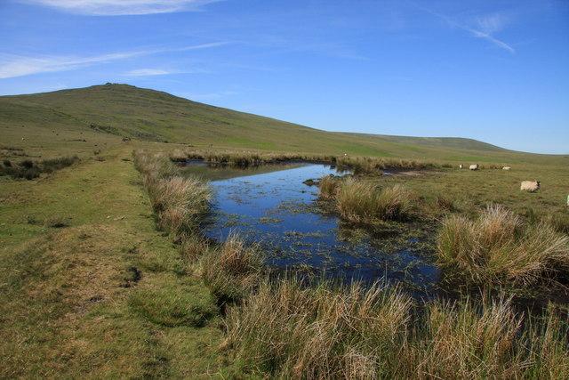 Black Down pond