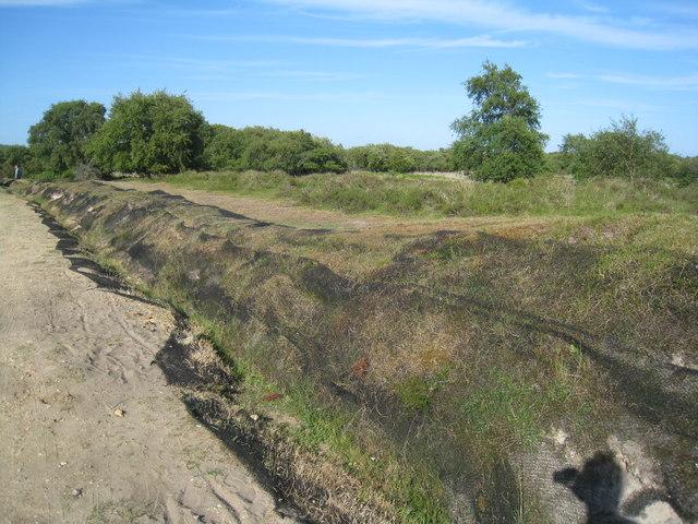 Combatting wind erosion