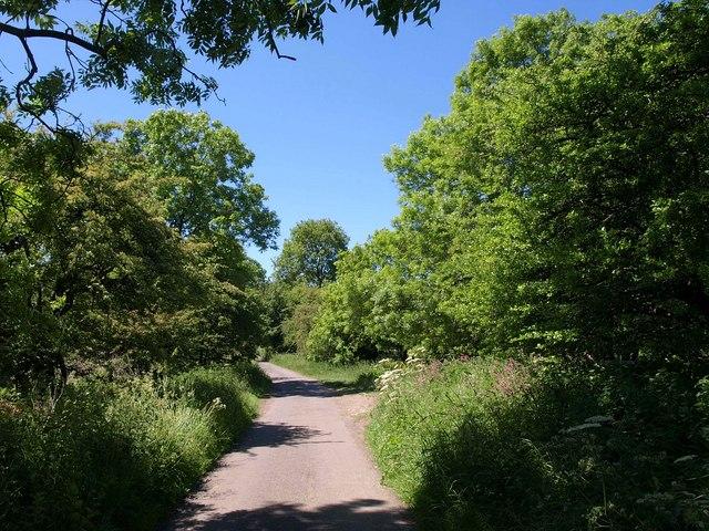 Nine Barrows Lane