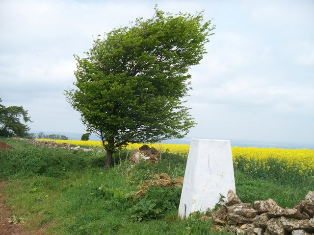 Triangulation pillar on Ebrington Hill