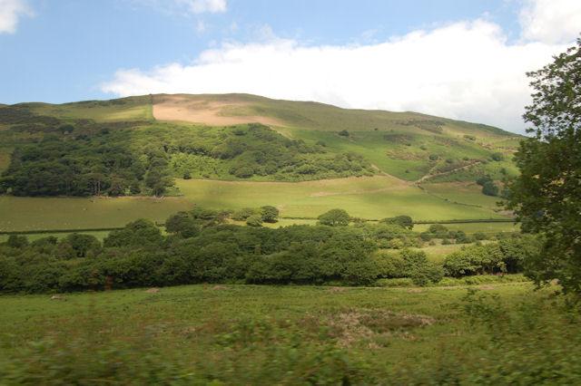 Woods in the valley below Dol-Dehauwydd
