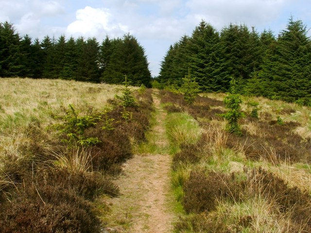 Footpath to Pappert Hill