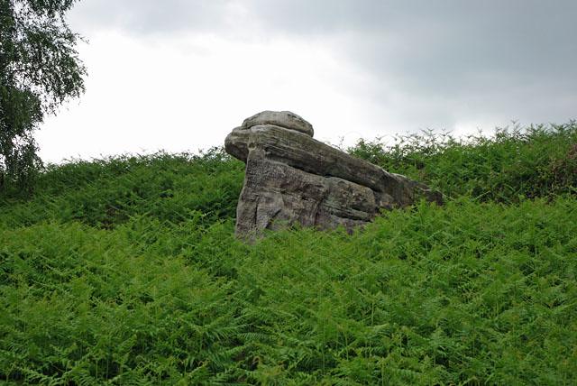 Sandstone crag, Standen
