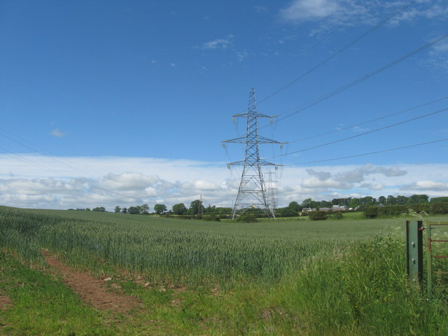 Crops and pylons near Easter Howlaws