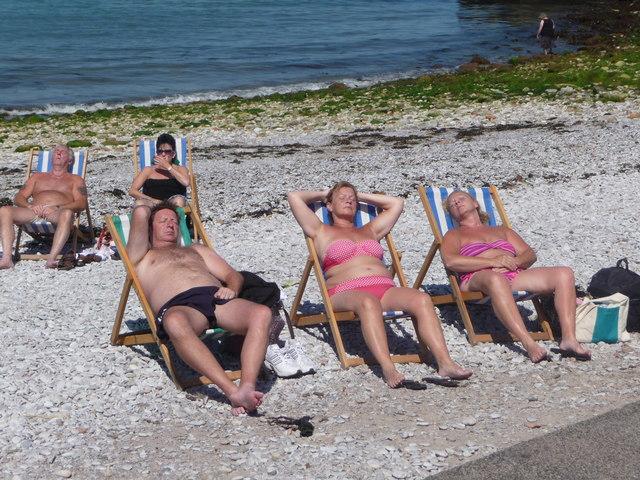Brixham : Sunbathing on the Beach