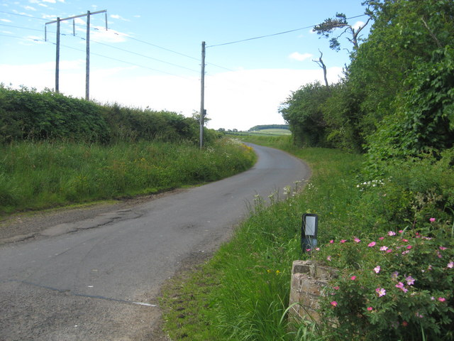 Unclassified road heading away from Hassington