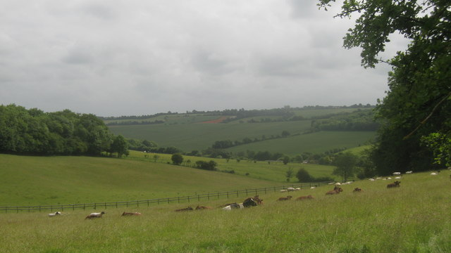 View from footpath near Yawlings Wood