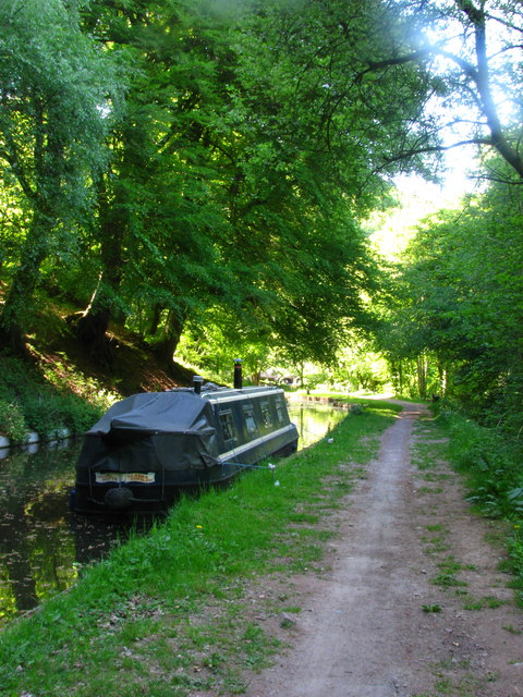 Nellie Nefyn by the Towpath
