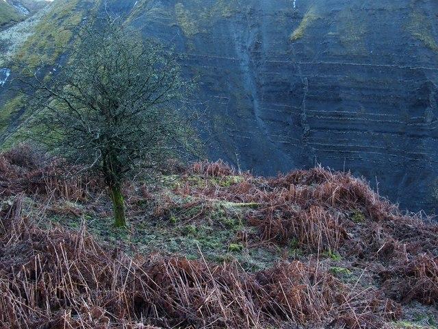 Lime-kiln ruin in lower Auchenreoch Glen