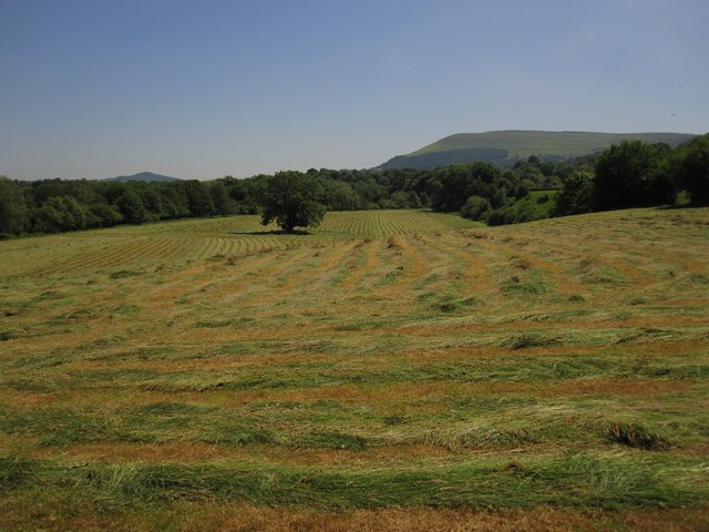 Fresh-cut hayfield, with Blorenge in the background