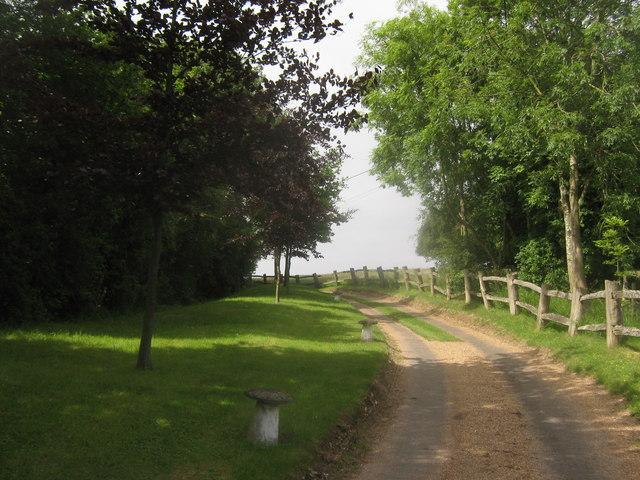 Access road to Ansdore Farm