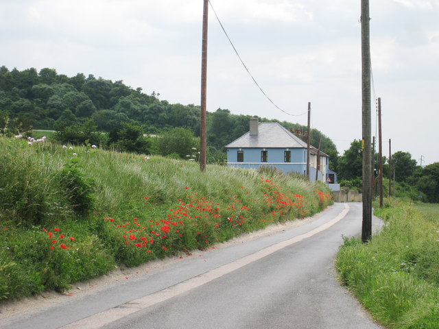 Poppy Lined Pilgrims Way