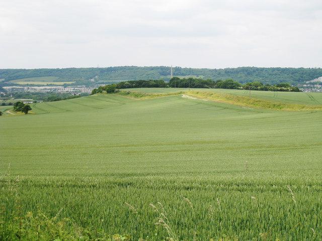 Cropland off Pilgrims Way