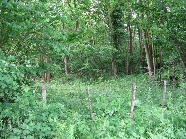 Wooded area called Whitelocks