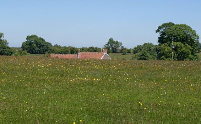 Chancellor's Farm