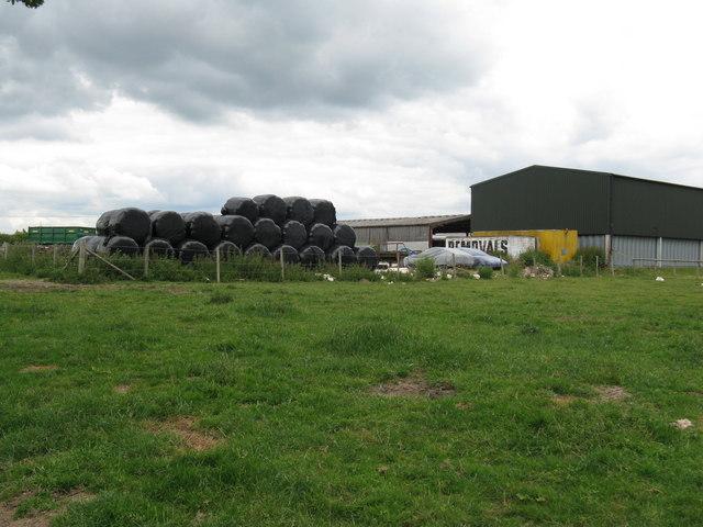 Bradford's Farm